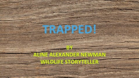 Thumbnail for entry Trapped! by Aline Newman, Wildlife Storyteller