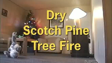 Thumbnail for entry Christmas Tree Fire
