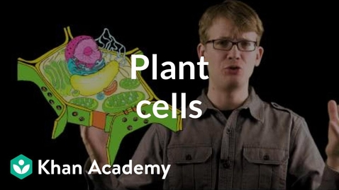 Thumbnail for entry Plant cells   Crash Course biology  Khan Academy