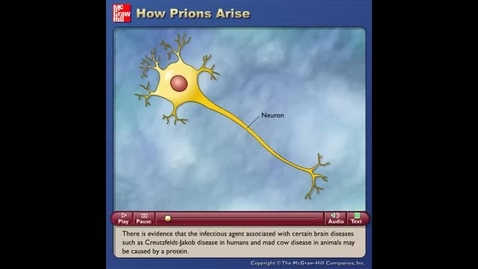 Thumbnail for entry How Prions Arise