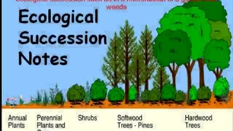 Thumbnail for entry Ecological Succession Notes