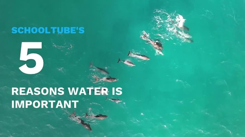 Thumbnail for entry SchoolTube's 5 Reasons Water Is Important
