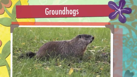Thumbnail for entry Groundhogs - Science - Horn - Grade 1