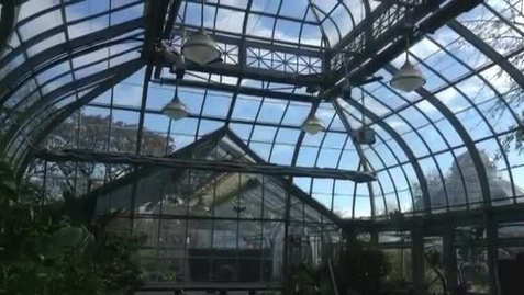Thumbnail for entry Allan Gardens