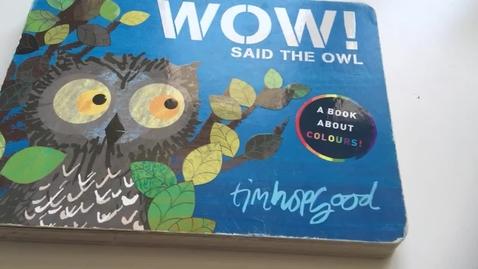Thumbnail for entry Wow! Said the Owl