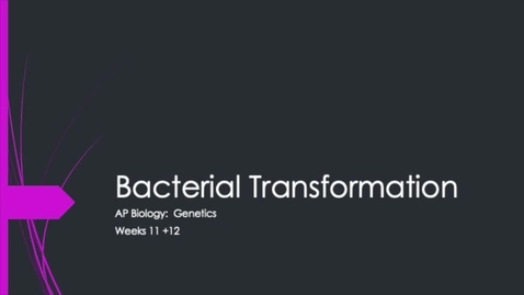 Thumbnail for entry Bacterial Transformation Part I