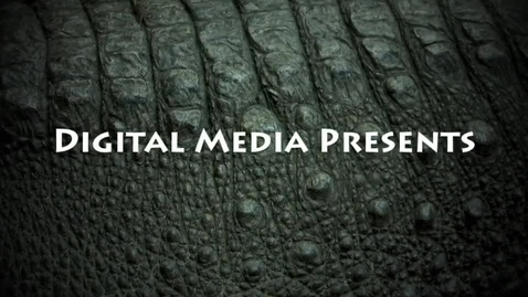 Thumbnail for entry Tyler Nunez: Alligator Festival Poster Contest Presentation