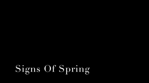 Thumbnail for entry Signs Of Spring