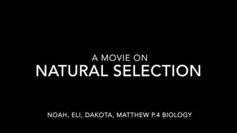 Thumbnail for entry NS, P.4, Group: Eli Belch, Noah Belch, Dakota Blizzard, and Matthew Lundy