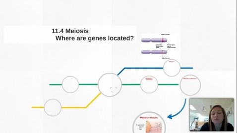 Thumbnail for entry 11.4 Meiosis Video Lecture