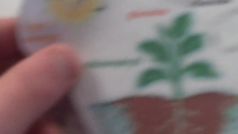 Thumbnail for entry Paper Slide 1