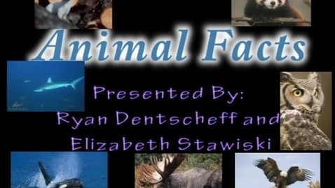 Thumbnail for entry Animal Facts - WSCN (2009-2010)