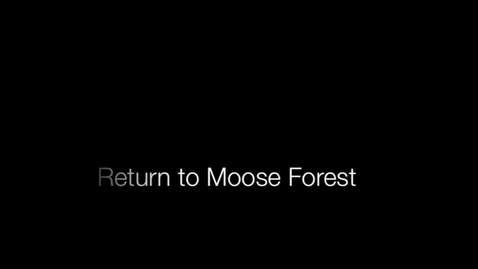 Thumbnail for entry Return to Moose Forest