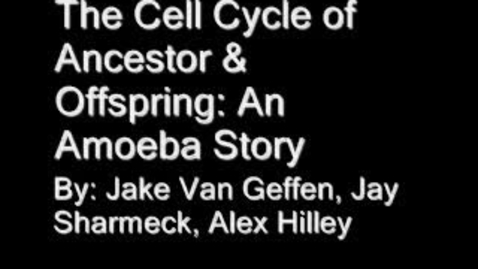Thumbnail for entry The Cell Cycle of Offspring and Ancestor