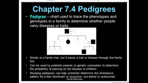 Thumbnail for entry Pedigree: Lesson 7.4