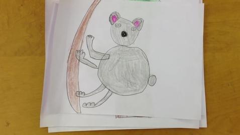 Thumbnail for entry Grade 1 Animal Research - Koalas 2