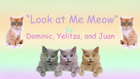 Thumbnail for entry Look at Me Meow