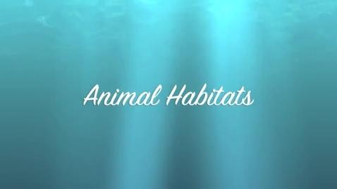 Thumbnail for entry Animal Habitats