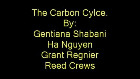 Thumbnail for entry The Carbon Cycle