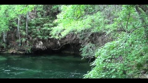 Thumbnail for entry St. Johns river psa