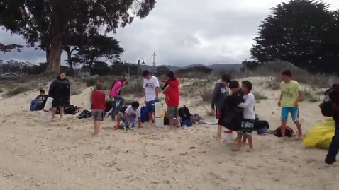 Thumbnail for entry LiMPETS - Mole Crab monitoring at Del Monte Beach Monterey 4/4/2014