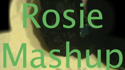 Thumbnail for entry Rosie Mashup