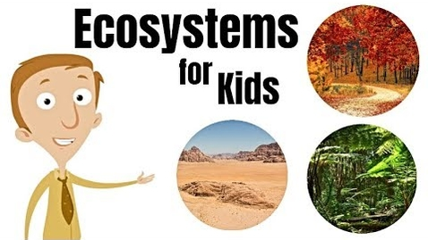 Thumbnail for entry Ecosystems for Kids