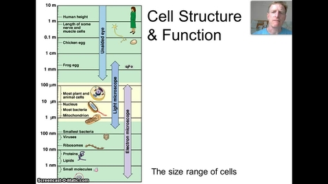 Thumbnail for entry Cells & Cell Structures  - Part I