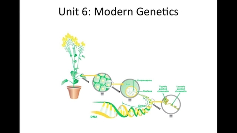 Thumbnail for entry Unit 6 Modern Genetics, Section 1 Human Inheritance Video