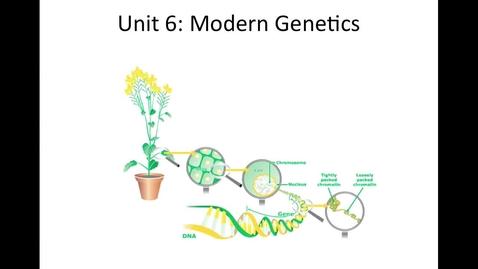 Thumbnail for entry Unit 6 Modern Genetics, Section 1 Human Inheritance Video
