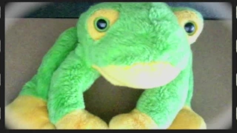 Thumbnail for entry THE TEDDY FROG