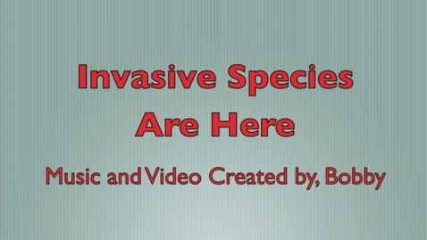 Thumbnail for entry Invasive Plants: Arundo