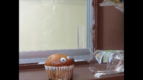 Thumbnail for entry Googley Eyed Muffin