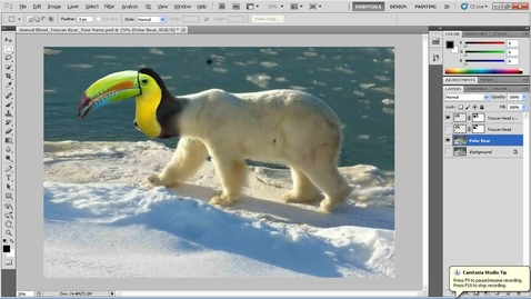 Thumbnail for entry Fantasy Animal Blending Exercise in Photoshop - Part 3