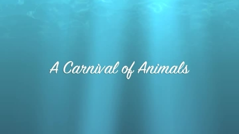 Thumbnail for entry Carnival of Animals Trombley Wilson School WY
