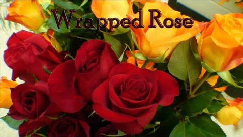 Thumbnail for entry Wrapped Rose
