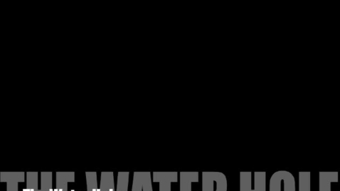Thumbnail for entry The Water Hole R
