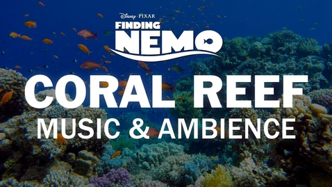 Thumbnail for entry Finding Nemo | Disney Music & Ambience - Coral Reef Underwater Sounds for Sleep, Study, Relaxation
