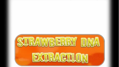 Thumbnail for entry Strawberry DNA Extraction