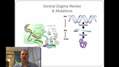 Thumbnail for entry Central Dogma Review and Mutations