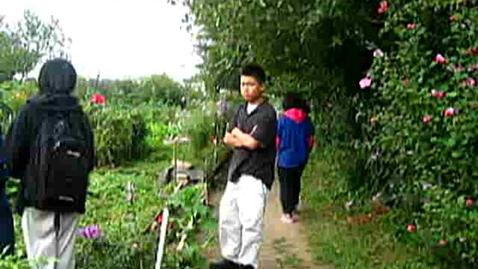 Thumbnail for entry Korean Gardens 12