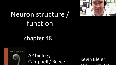 Thumbnail for entry Neuron action potentials