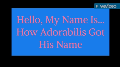 Thumbnail for entry Hello My Name Is...