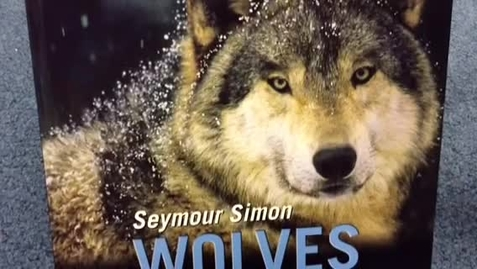 Thumbnail for entry Wolves by Seymour Simon