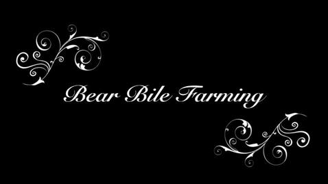 Thumbnail for entry Bear Bile Farming