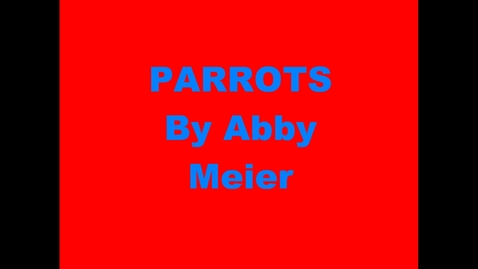 Thumbnail for entry Parrots