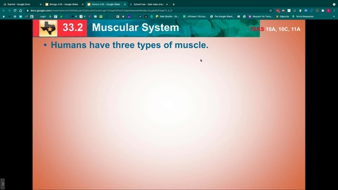 Thumbnail for entry Muscular System Notes