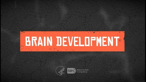 Thumbnail for entry Effects of Drugs on Teen Brain Development Lesson 2.1
