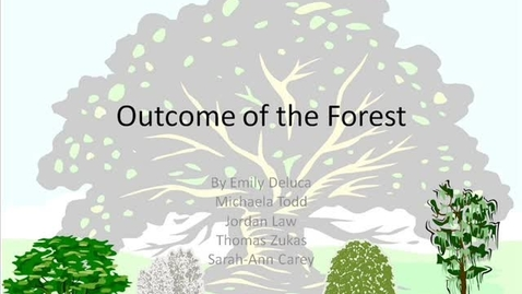 Thumbnail for entry The Outcome of The Forest