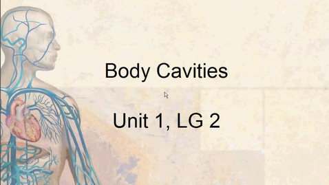 Thumbnail for entry A&P Body Cavities